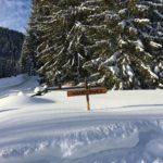 am Winterwanderweg